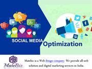 Professional Social Media Optimization Company Can Boost Your Traffic
