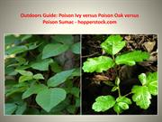 Outdoors Guide Poison Ivy versus Poison Oak versus Poison Sumac - hopp