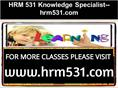 HRM 531 Knowledge Specialist--hrm531.com