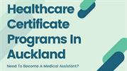 Healthcare Certificate Programs In Auckland Need To Become A Medical A