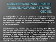 CANADIAN'S ARE NOW TREATING THEIR AILING FAMILY PETS