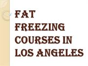 Fat Freezing Courses in Los Angeles
