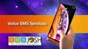 Bulk Voice SMS Hyderabad, Voice Call Service Provider in Hyderabad