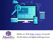 Matebiz India Is Expert Web Development Company