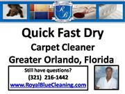 Quick Dry Carpet Cleaner 321-216-1442
