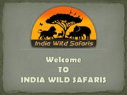 Budgeted Popular Wildlife Tiger Safari Destination In India