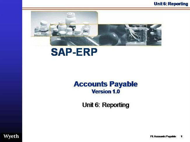 SAP Accounts Payable Reporting |authorSTREAM