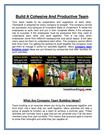 Build A Cohesive And Productive Team