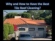 Why and How to Have the Best Tile Roof Cleaning