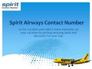 Make your Every Big Dream Possible with Spirit Airlines