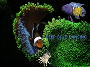 Deep Blue Dancing