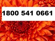 AOL help desk Phone Number usa AOL Support Phone Number. Asif