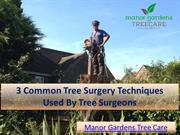 3 Common Tree Surgery Techniques Used By Tree Surgeons