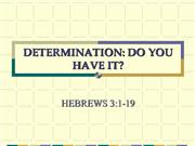 DETERMINATION: DO YOU HAVE IT?