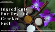 Foot Cream Ingredients For Dry and Cracked Feet