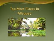 Top Most Places In Alleppey