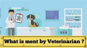 Veterinarians For Your Pet Health Care