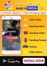 Pixalive Social Media Network App