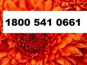 AVAST technical support -1-800-541-0661 tech support phone nu