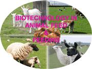 BIOTECHNOLOGY IN ANIMAL FEED