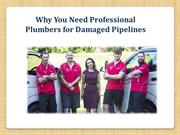 Why You Need Professional Plumbers for Damaged Pipelines