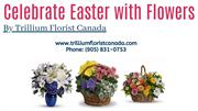 Celebrate Easter with Flowers By Trillium Florist Canada