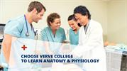 Choose Verve College To Learn Anatomy & Physiology