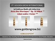 GOLDEN GROW INTERNATIONAL