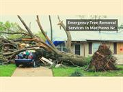 EMERGENCY TREE REMOVAL SERVICES IN MATTHEWS NC