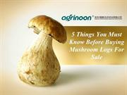 5 Things You Must Know Before Buying Mushroom Logs For Sale