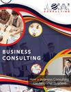 How a Business Consulting can help your business