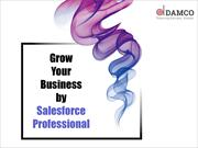 Grow Your Business by Salesforce Professional