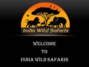 Best Wildlife Tour Operators In India