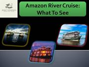 Amazon River Cruise What To See