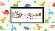 Siddigitall is the best digital marketing company in Delhi