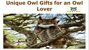 Unique Owl Gifts for an Owl Lover