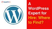 A WordPress Expert for Hire: Where to Find?