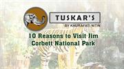 Reasons To Come Jim Corbett Park | Luxury Resorts In Jim Corbett