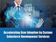 Accelerating User Adoption by Custom Salesforce Development Services