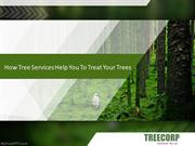 How Tree Services Help You To Treat Your Trees