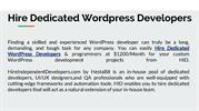 Hire Dedicated WordPress Developers | Hire within 24 hours