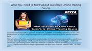 What You Need to Know About Salesforce Online Training Course