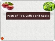 Pests of Tea, Coffee and Apple
