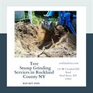 Tree Stump Grinding Services in Rockland County NY