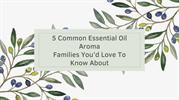 5 Common Essential Oil Aroma Families You'd Love To Know About