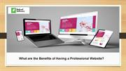 What are the Benefits of Having a Professional Website