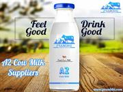 A2 Cow Milk Suppliers