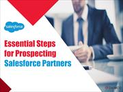 Essential Steps for Prospecting Salesforce Partners