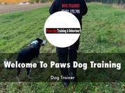 Paws Dog Training Presentation