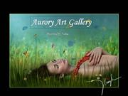 Aurory Art Gallery